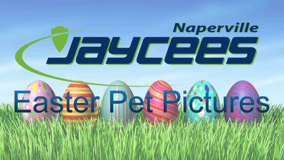 Naperville Easter Bunny Pet Pictures at Two Bostons | 2018 @ Two Bostons | Naperville | Illinois | United States